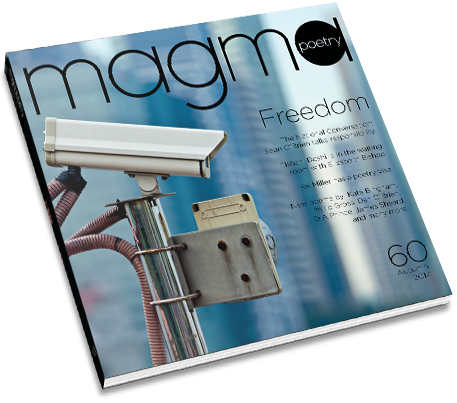 Magma 60 cover