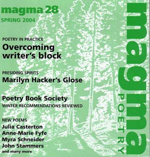 Magma 28 cover