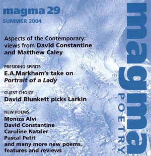 Magma 29 cover