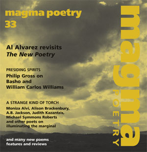 Magma 33 – The unnoticed, the ignored cover