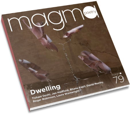 Magma 79 cover
